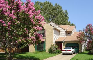 House with flowering tree